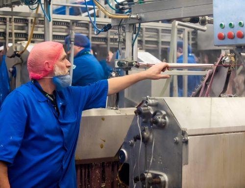 Vleesverwerkende industrie